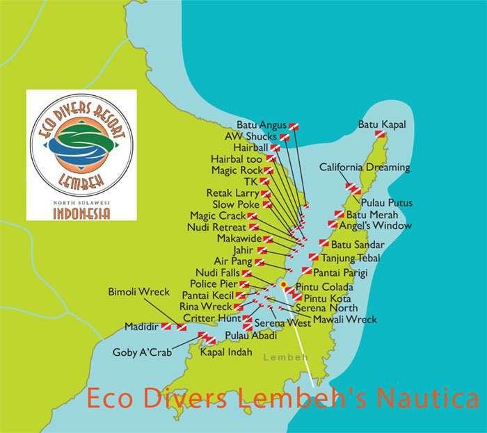 Dive Lembeh Strait with Eco Divers   Eco Divers Manado
