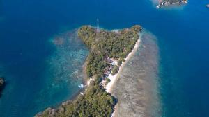 Your peaceful Paradise in Lembeh Strait